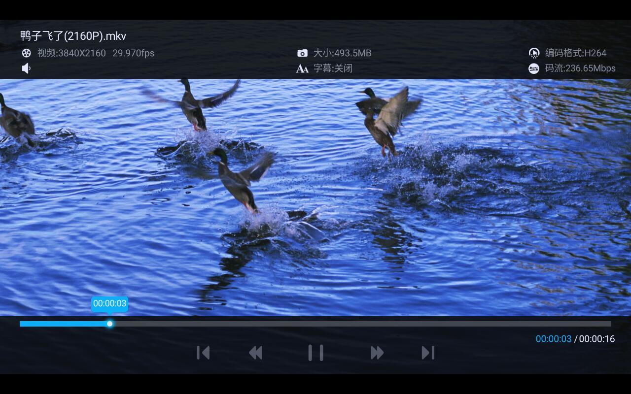 鸭子飞了.jpg